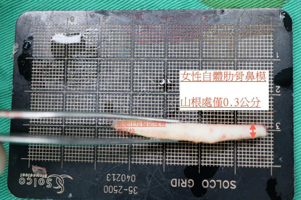 DSC02100 (1)