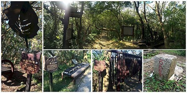 trails&decos.jpg