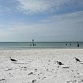 純白棉棉的沙灘