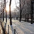紐約07ʻ年第一場雪