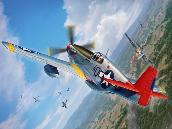 1-tuskegee-airmen-p-51-mustang-stu-shepherd.jpg