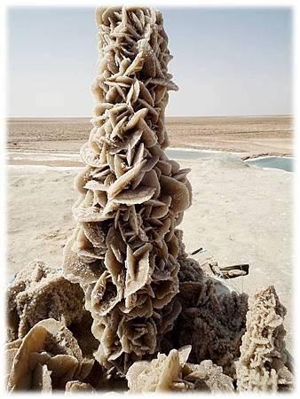 沙漠玫瑰-10.jpg