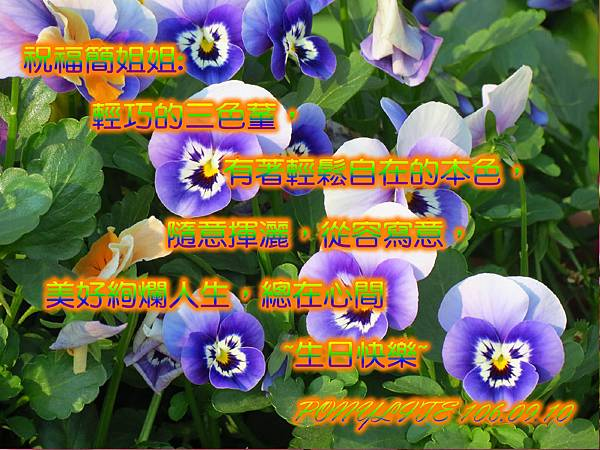 JOYCE-106-01.jpg