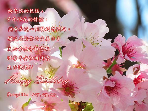 VAIMG_1070701