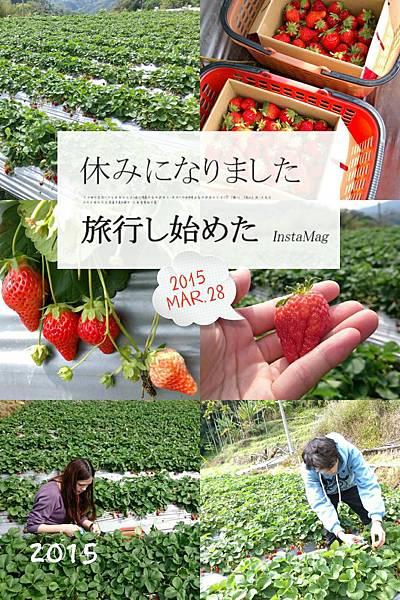 2015-03-28-16-03-02_deco.jpg