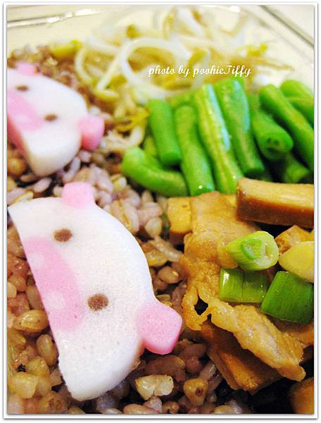 豆干炒豬頸肉+清燙四季豆+水炒豆芽菜+十穀飯+豬豬魚板