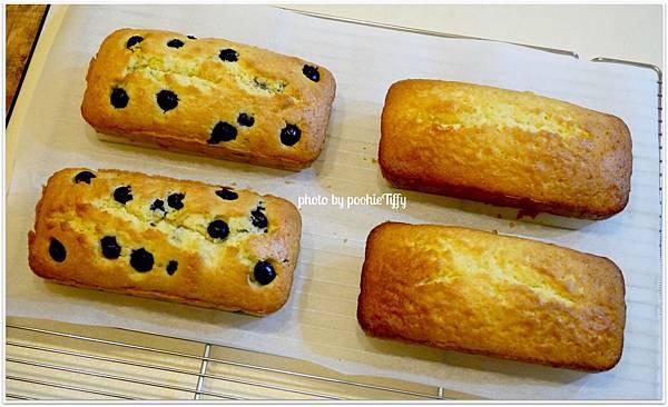 20130112 藍莓磅蛋糕。香橙磅蛋糕。巧克力布朗尼 (2)