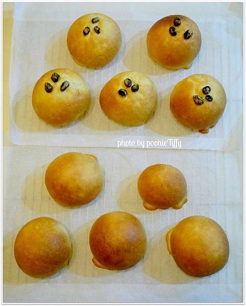 20130114 墨西哥麵包 (7)