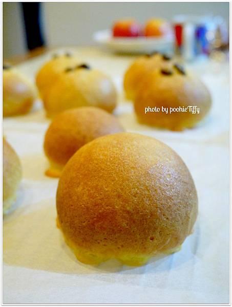 20130114 墨西哥麵包 (8)