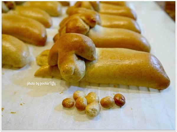 20130117 熱狗麵包 (8)