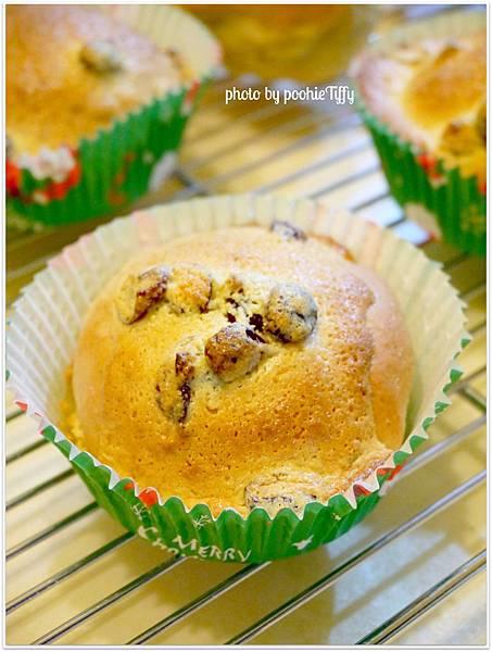 20130201 全麥蔓越莓奶酥麵包。全麥小餐包 (3)