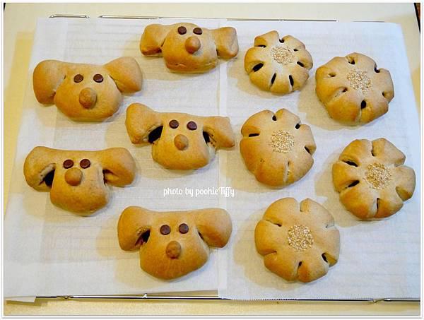 20130207 狗狗造型紅豆麵包 (6)