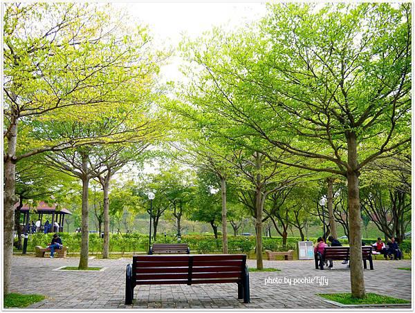 20130210 春節假期隨手拍拍 (14)