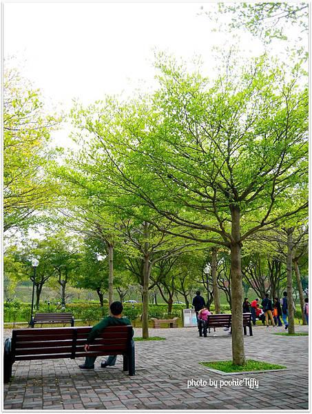 20130210 春節假期隨手拍拍 (15)