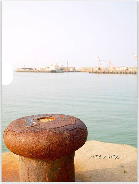 20130228 竹圍魚港 (16)