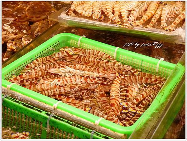 20130228 竹圍魚港 (56)