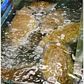 20130228 竹圍魚港 (57)