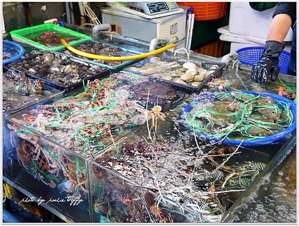20130228 竹圍魚港 (58)