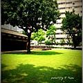 20130629 玫瑰古蹟 (2).JPG