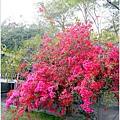 2014春節環島公路行038.jpg