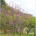 20140216 壽山巖觀音寺_17.jpg
