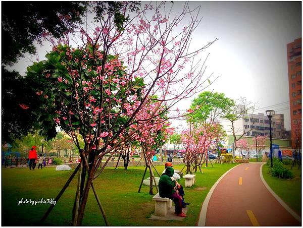 20140316 南崁溪旁運動公園_07.jpg