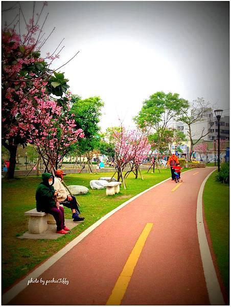20140316 南崁溪旁運動公園_08.jpg