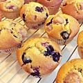 覆盆子藍莓馬芬