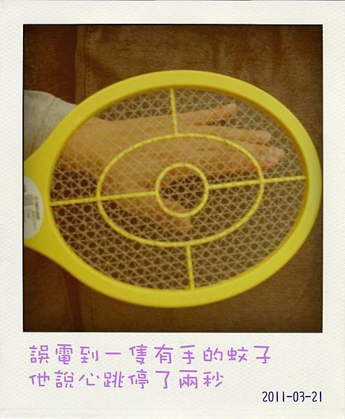 DSC09846-pola01.jpg