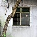 IMG_0134-2.jpg