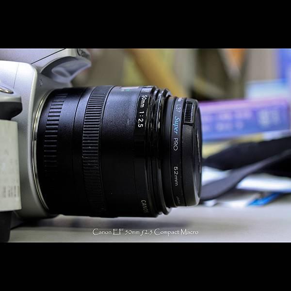 50mm macro-2.jpg