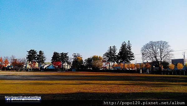 IMG_20151017_150909.jpg
