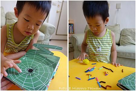 蜘蛛-003.jpg
