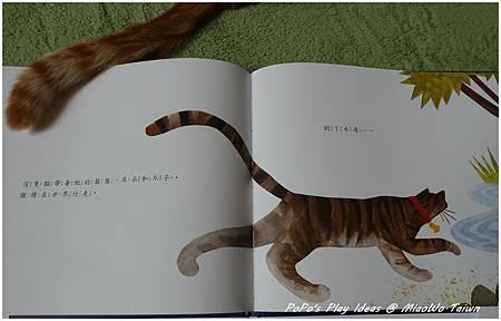 book-他們都看見一隻貓-11.jpg