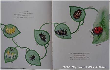 book-科普-05.jpg
