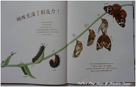 book-科普-06.jpg