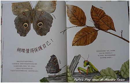 book-科普-09.jpg
