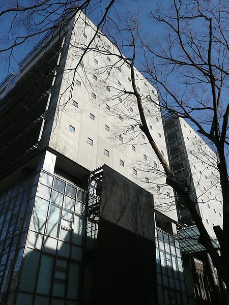 跟新穎的建築形成強烈的對比