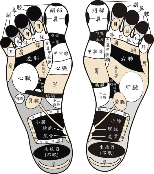 foot-reflex-zoning.jpg