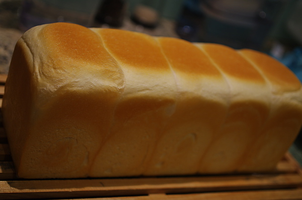 白神山酵母卡蕾土司.JPG