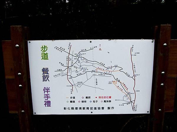 2013藤山桐花-0249