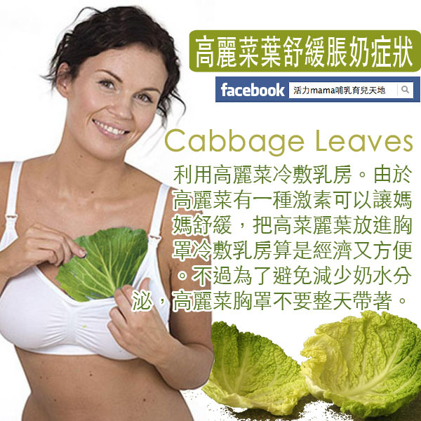 Cold cabbage