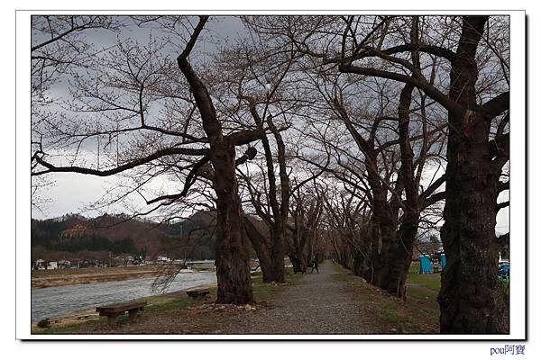 IMG_8691.jpg