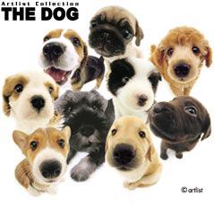 The-Dog3.jpg
