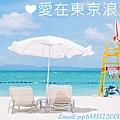 DSC_6387_副本2