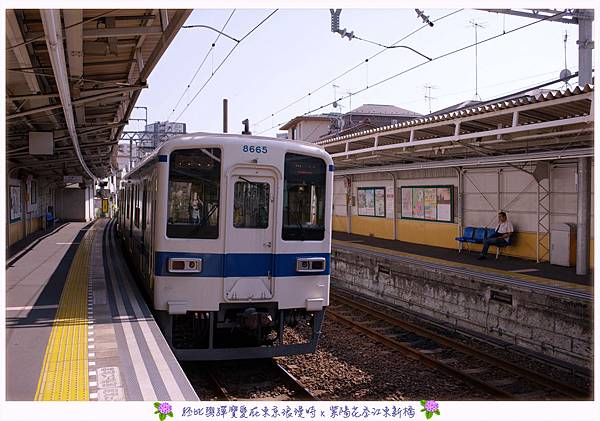 DSC_1476.jpg