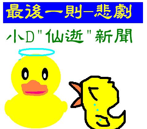 見小鴨最後一面1.bmp