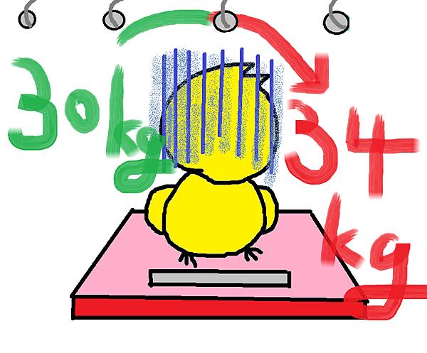 鴨的彩色記事簿2-5.png