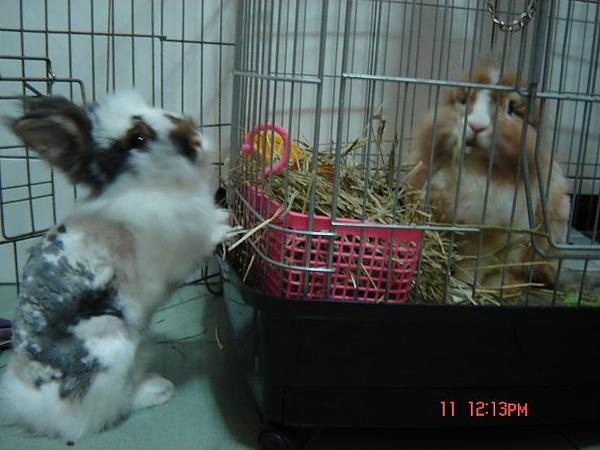 2009.6.jpg