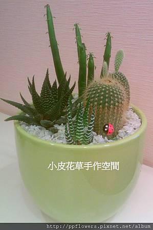 IMAG0757-1.jpg